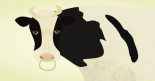 牛乳とニキビ